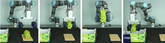 '만능 로봇손' 나왔다…포도, 딸기 등도 손상없이 집는다